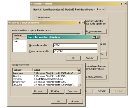 Setting OSDK variable under Windows 2000